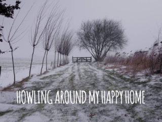 Vrij werk - Howling Around My Happy Home